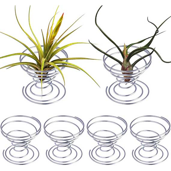Shappy 6 Pieces Air Plant Stand Airplant Container Tillandsia Holder Stainless Steel Plant
